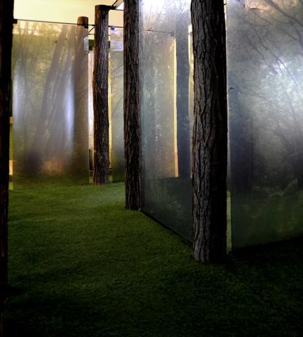 kiállítás belsőépítészet